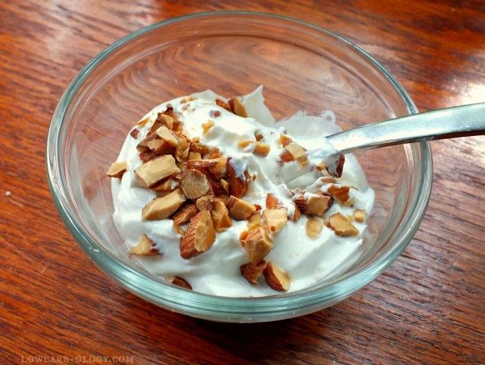 low carb yogurt  lowcarb-ology.com